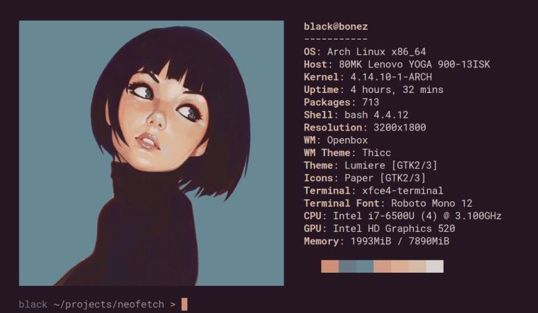 Cómo mostrar la información de tu distro Linux preferida desde la terminal y al estilo Geek